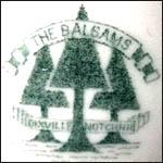 Balsams 2