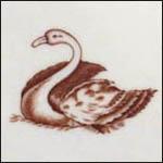 Brown Swan Club 2