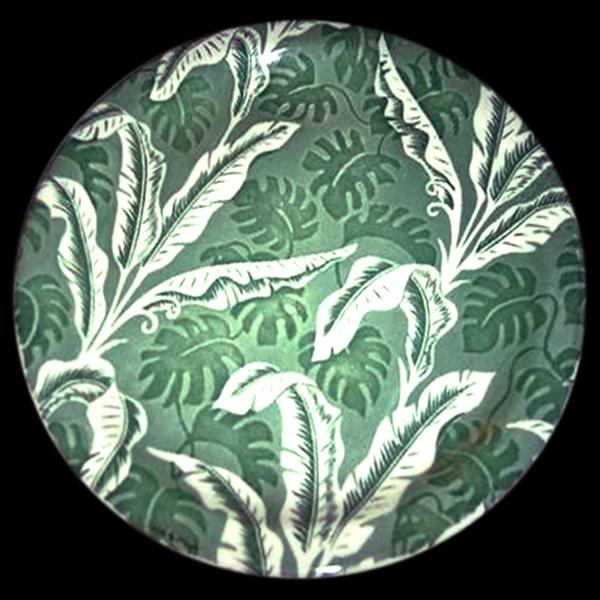 Palm-shenango